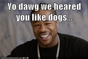 Yo dawg we heared you like dogs...