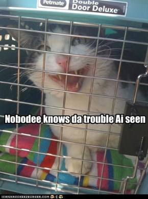 Nobodee knows da trouble Ai seen