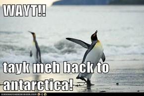 WAYT!!  tayk meh back to antarctica!