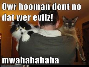 Owr hooman dont no dat wer evilz!  mwahahahaha