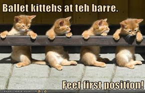 Ballet kittehs at teh barre.  Feet first position!