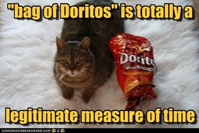 """bag of Doritos"" is totally a legitimate measure of time"