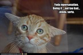 Yoda, I are.