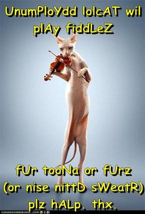 UnumPloYdd lolcAT wil plAy fiddLeZ  fUr tooNa or fUrz  (or nise nittD sWeatR) plz hALp. thx.