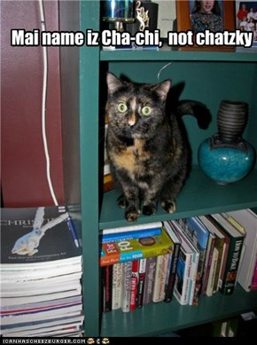Your cat tchotchke looks so real!