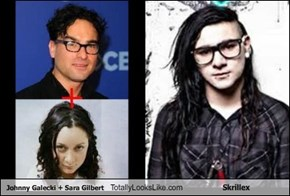 Johnny Galecki + Sara Gilbert Totally Looks Like Skrillex