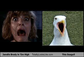 Janelle Brady in 'Em High Totally Looks Like This Seagull