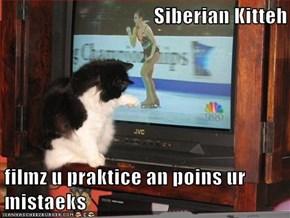 Siberian Kitteh  filmz u praktice an poins ur mistaeks
