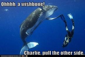 Ohhhh, a wishbone!