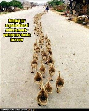 Kind of Like the Pied Piper