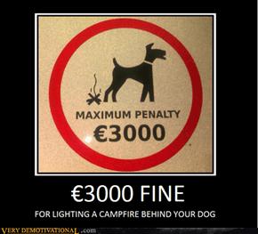 3000 FINE