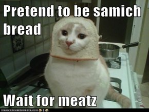 Pretend to be samich bread  Wait for meatz