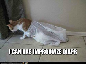 I CAN HAS IMPROOVIZE DIAPR