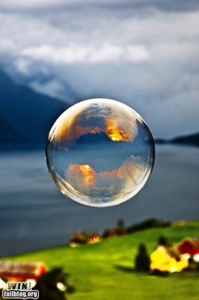 Bubble Reflection WIN