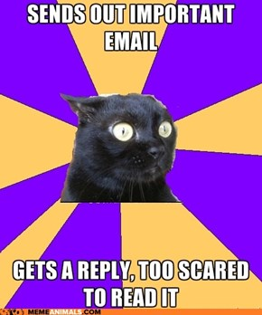 Anxiety Cat: Someone Probably Noticed That Typo...