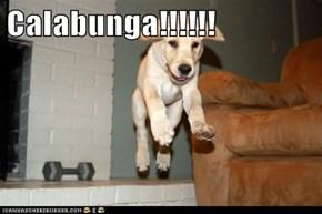 Calabunga!!!!!!