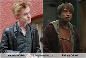Macaulay Culkin Totally Looks Like Rickety Cricket