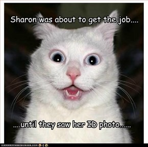 Sharon was about to get the job....