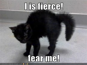I is fierce!  fear me!