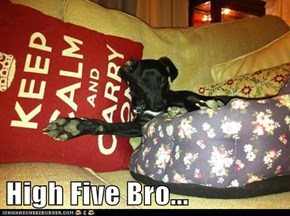 High Five Bro...