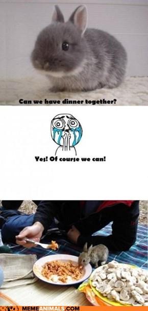 Meme Animals: Interspecies OMNOMNOMS!