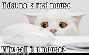 If dat not a real mouse  Why call it a mouse?