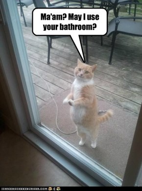 Ma'am? May I use your bathroom?