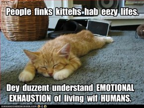 People  finks  kittehs  hab  eezy  lifes.