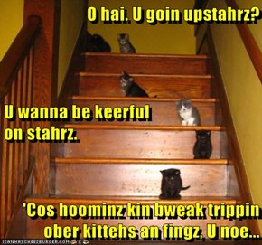 O hai. U goin upstahrz? U wanna be keerful                          on stahrz.  'Cos hoominz kin bweak trippin ober kittehs an fingz, U noe...