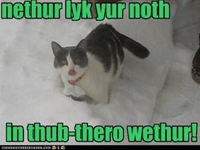 mai thung? no itth not thuck, whai do yu athk?