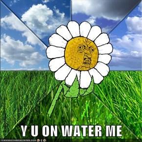 Y U ON WATER ME