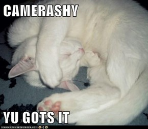 CAMERASHY  YU GOTS IT