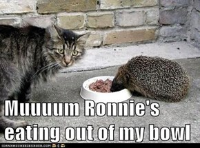Muuuum Ronnie's eating out of my bowl