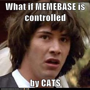 What if MEMEBASE is controlled  by CATS