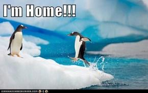 I'm Home!!!