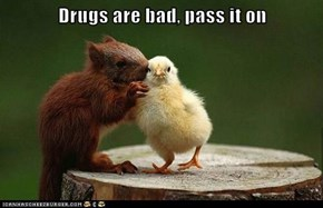 Drugs are bad, pass it on