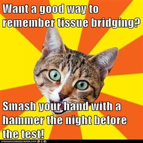 Want a good way to remember tissue bridging?  Smash your hand with a hammer the night before the test!