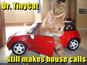 Dr. TinyCat  still makes house calls