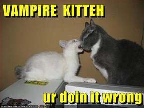 VAMPIRE  KITTEH  ur doin it wrong