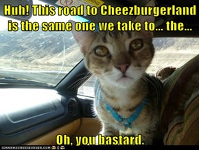 Huh! This road to Cheezburgerland is the same one we take to... the...  Oh, you bastard.