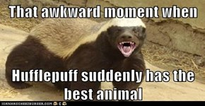 That awkward moment when  Hufflepuff suddenly has the best animal