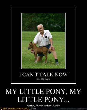 MY LITTLE PONY, MY LITTLE PONY...