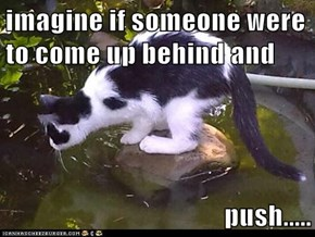 imagine if someone were to come up behind and  push.....