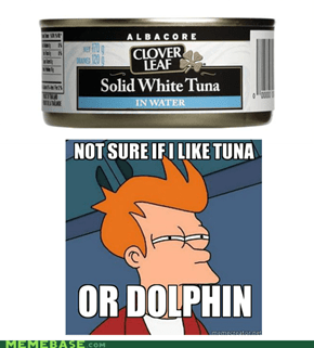 Tuna or Dolphin? that is the question