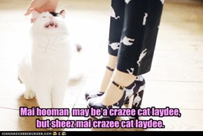 Lolcats: She's Nawt Crayzee, She's Mai Hoomin!