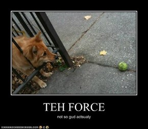 TEH FORCE