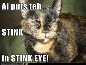 Ai puts teh STINK in STINK EYE!