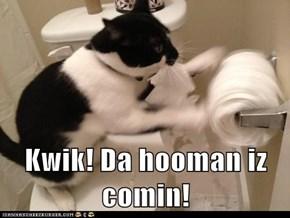 Kwik! Da hooman iz comin!