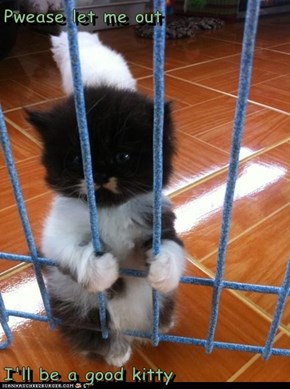 Pwease let me out