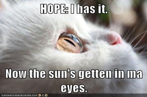 HOPE: I has it.  Now the sun's getten in ma eyes.